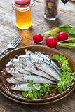 Small smelts fish Stock Photos