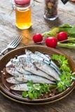 Small smelts fish Stock Photos