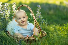 Small smiling child in sliders sitting a basket Stock Photography