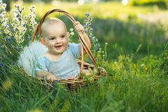 Small smiling child in sliders sitting a basket Stock Images