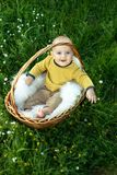 Small smiling childin sitting in a basket Stock Image