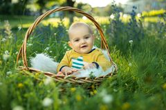 Small smiling childin sitting in a basket Royalty Free Stock Image