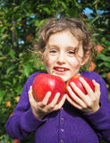 Small smiling girl holding apples in an orchard Royalty Free Stock Images