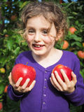 Small smiling girl holding ripe apples in an orchard Stock Photo