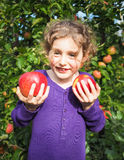Small smiling girl  in an orchard holding ripe apples Stock Photography