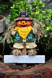 Small smiling scarecrow Stock Images