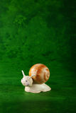 Small snail Stock Photos