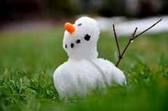 Small snowman braves the thaw period Stock Image
