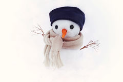 Small snowman in a cap and a scarf on snow in the winter against the background of trees. Stock Photos
