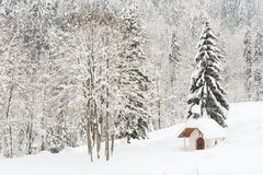 Small Snowy Alpine Chapel in the Forest I Stock Photos