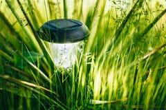 Small Solar Garden Light, Lantern In Flower Bed. Garden Design. Stock Photography