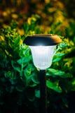 Small Solar Garden Light, Lantern In Flower Bed. Garden Design. Royalty Free Stock Photos