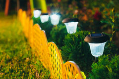 Small Solar Garden Light, Lantern In Flower Bed. Garden Design. Royalty Free Stock Image