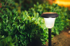 Small Solar Garden Light, Lantern In Flower Bed. Garden Design. Stock Images