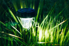 Small Solar Garden Light, Lantern In Flower Bed Royalty Free Stock Image