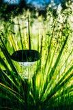 Small Solar Garden Light, Lantern In Flower Bed Royalty Free Stock Photo