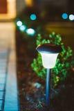 Small Solar Garden Light, Lantern In Flower Bed Royalty Free Stock Images