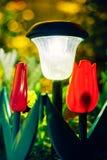 Small Solar Garden Light, Lantern In Flower Bed. Garden Design. Small Solar Garden Light, Lanterns In Flower Bed. Garden Design. Solar Powered Lamp Stock Photo