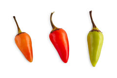 Small sort of chili peppers isolated on white background. Small sort of chili pepper habanero or jalapeno isolated on white background. Closeup image of ideal royalty free stock photos