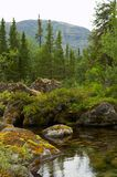Small spring lake. Russian North. Russian Lapland. Arctic nature Royalty Free Stock Images