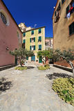Small square in Sori. Small square with stone paving and olive trees in Sori, Liguria, Italy Royalty Free Stock Images