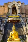 Small statue of Buddha. Small golden statue of Buddha in front of the Wat Chedi Luang Worawihan Buddhist temple in Chiang Mai, north Thailand royalty free stock photo