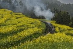 Little steam engine train in Jiayang, china stock photography