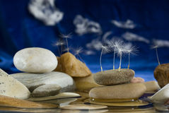 Small still-life in the form of a sea landscape. Small still-life in the form of the sea landscape, consisting of stones, water and dandelion seeds Stock Photography