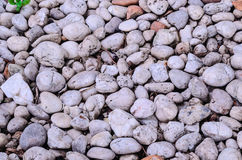 Small Stone Background Texture.  Royalty Free Stock Image