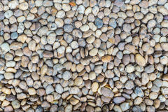 Small stone floor Royalty Free Stock Photo