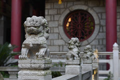 Small stone lions Stock Image