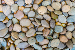 Small stone. Mix colors small stone, texture Royalty Free Stock Photography