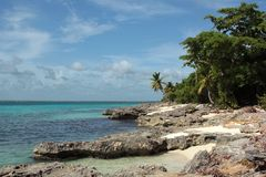 Small stone Saona Island Dominican Republic Royalty Free Stock Images