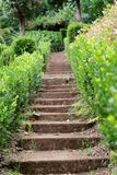 Small stone staircase in a garden. Madeira, Portugal. Small stone staircase in a garden near to the Church of our Lady of Monte in Nossa Senhora Do Monte stock photography