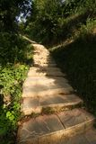 Small stone steps in forest. In morning sunshine royalty free stock image
