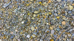 Small stones crowd in the garden. Small stones crowdin the garden photography Royalty Free Stock Images