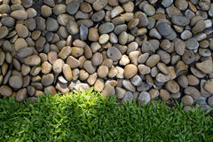Small stones and fresh green grass Stock Image