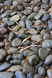 Small stones made their way on foot. A walk in the park, made of small stones Royalty Free Stock Photography