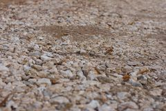 Small stones on the road. Background and texture royalty free stock photos