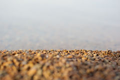 Small stones on the shore Stock Images