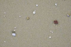 Small stones of various colors on the sand royalty free stock photography
