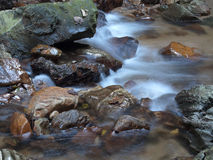 Small stream Royalty Free Stock Photography