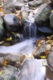 Small stream. Current among the stones Royalty Free Stock Images
