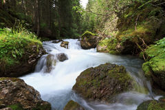 Small stream royalty free stock photos