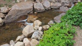 Small Stream royalty free stock photography