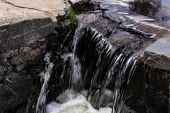 Small stream Stock Image