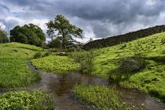 Small stream in the English Lake District Stock Photo