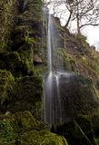 Small stream of falling water at Melincourt Waterfall Royalty Free Stock Images