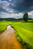 Small stream in a farm field in rural Carroll County, Maryland. Royalty Free Stock Images