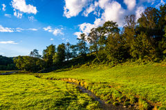 A small stream through a field in rural York County, Pennsylvani Stock Photography